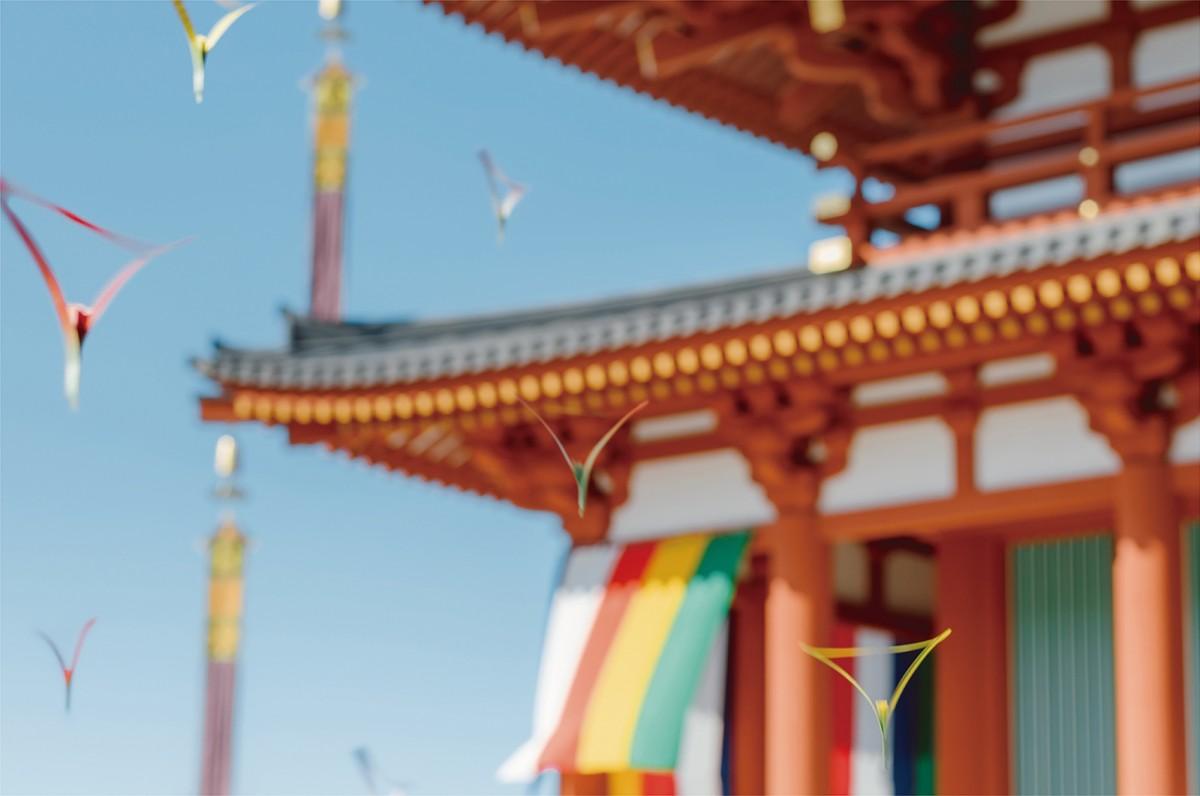 興福寺中金堂落慶法要散華 まわり花 | 三澤遥